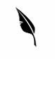 Rana Sweis Logo